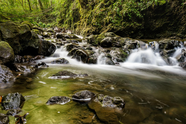 Pipiwai Stream