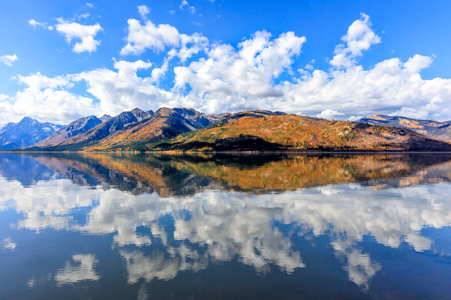 Reflection on Jackson Lake