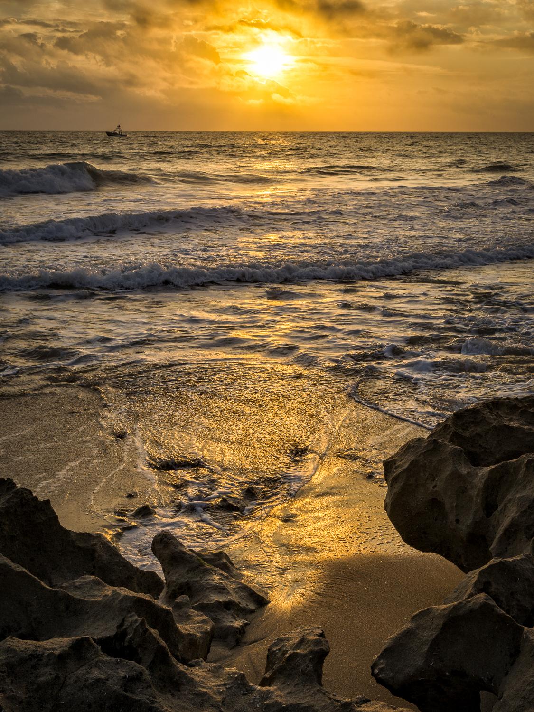 Stuart Rocks Florida