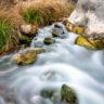 Spring at Pedernales Falls